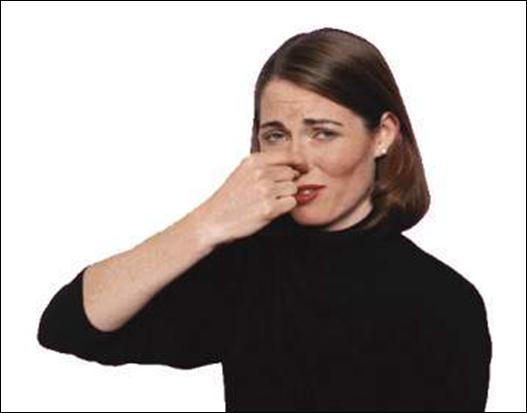Odor-discomfort2